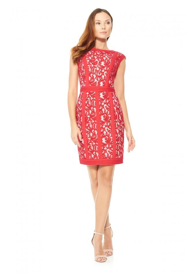 打条针织布蕾丝盖袖连衣裙