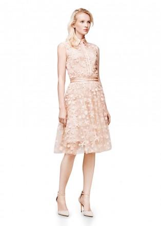 海星蕾丝衬衫领连衣裙