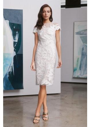 绣花蕾丝盖袖直身连衣裙