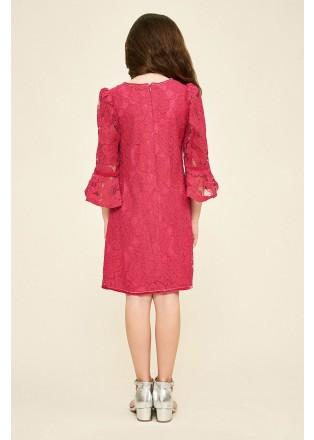 花朵绣花蕾丝荷叶袖A型连衣裙