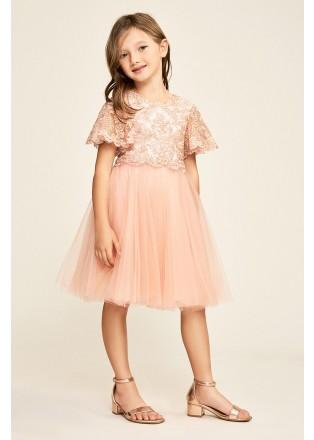 金属蕾丝薄纱小礼服